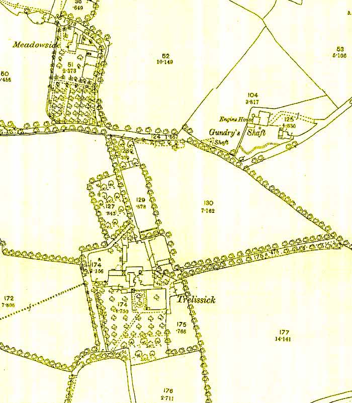 Map of the Trelissick area of Hayle, Cornwall, showing the old pasty trees